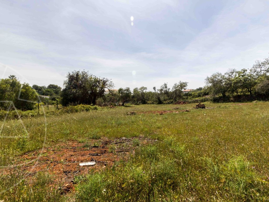 Rural Land_for_sale_in_Loulé_SMA10726