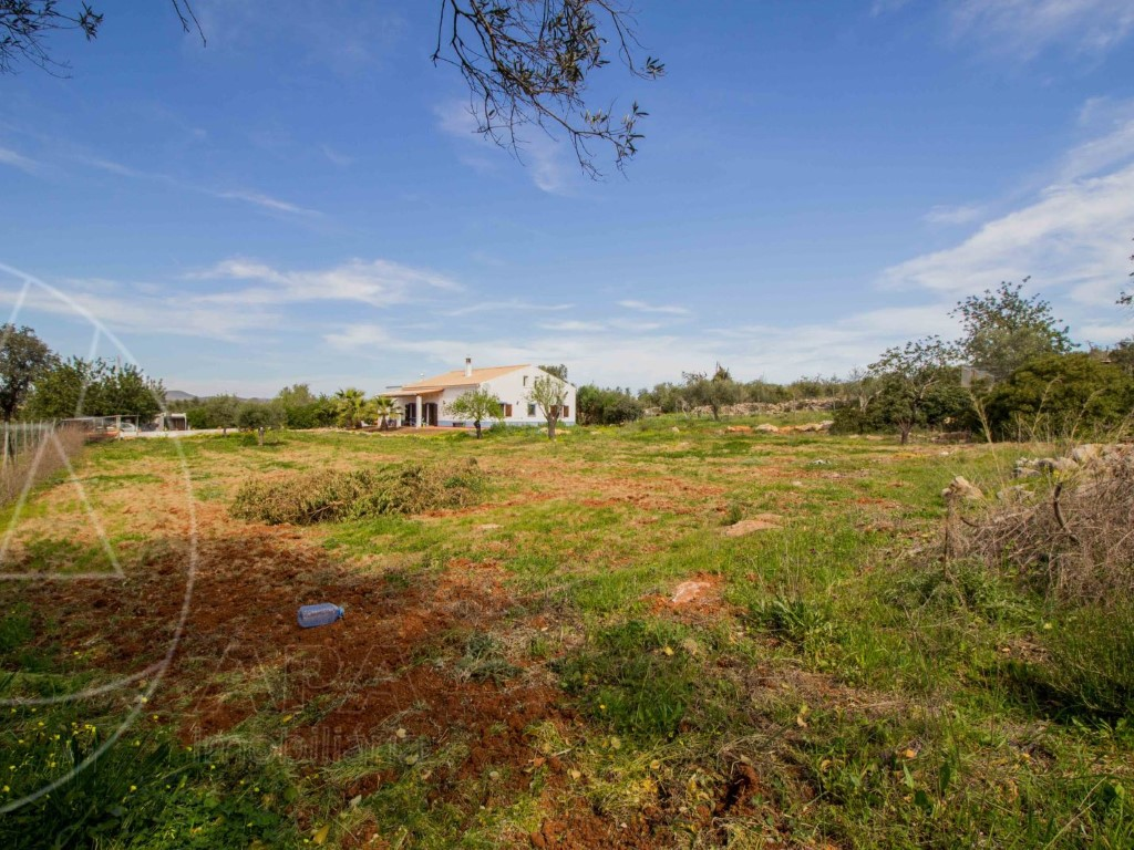 Property Ref 11293 For Sale In Portugal En