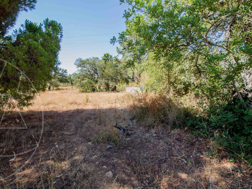 Land_for_sale_in_Loulé_SMA11301