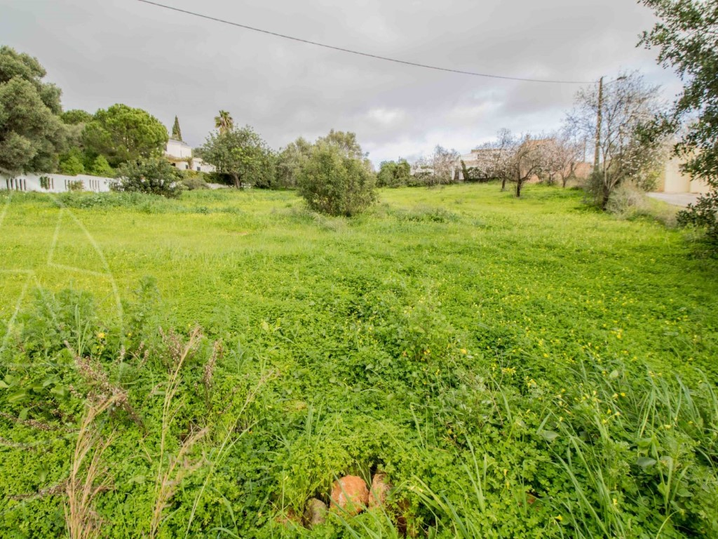 Land_for_sale_in_Loulé_SMA11536