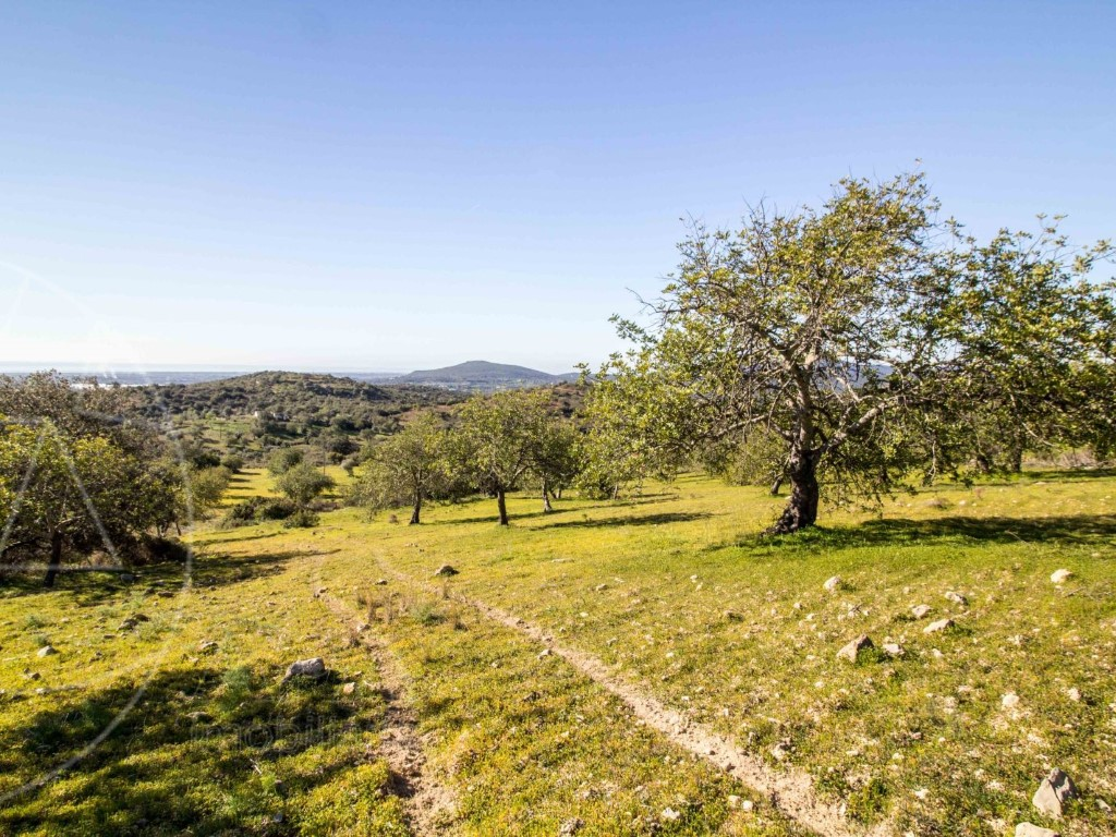 Mixed Land_for_sale_in_Tavira_SMA11563