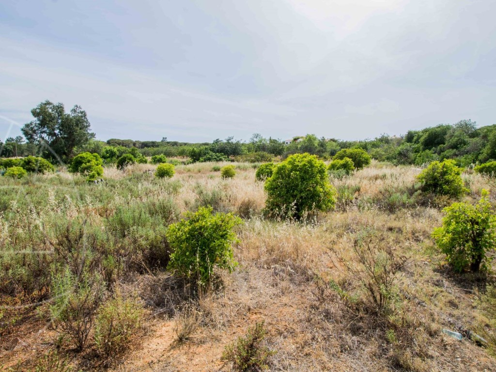 Land_for_sale_in_Loulé_SMA11567