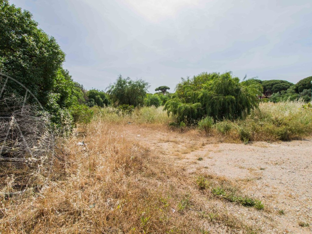 Land_for_sale_in_Loulé_SMA11583