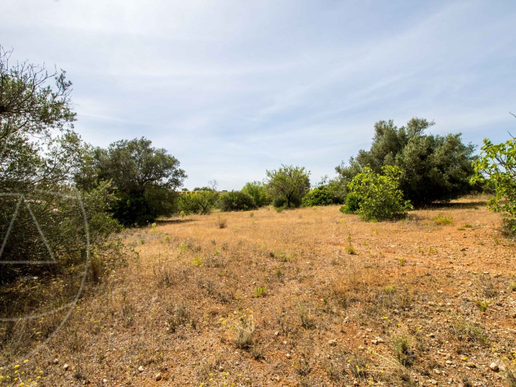 Rural Land_for_sale_in_Loulé_SMA11680