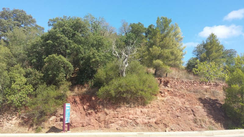 Land_for_sale_in_Silves, Albufeira, Guia_SMA11882