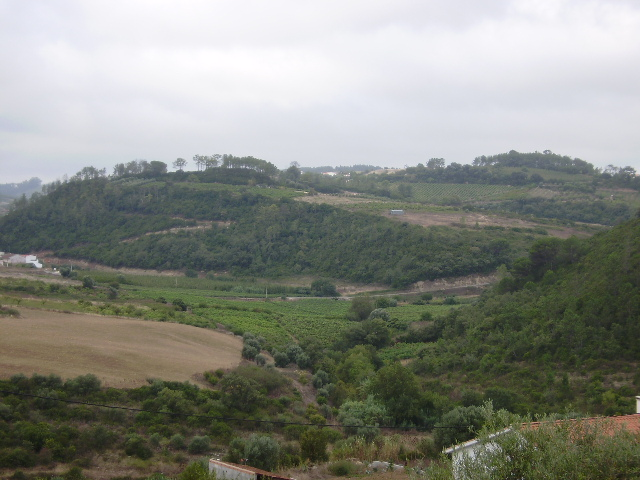 Land_for_sale_in_Alcobaca_sco11924