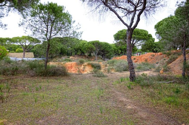Land_for_sale_in_Quinta do Lago, Almancil, Vale do Lobo, Vilamoura, Quarteira_EMA12153