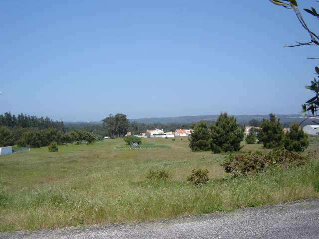 Land_for_sale_in_Salir do Porto_SCO1246