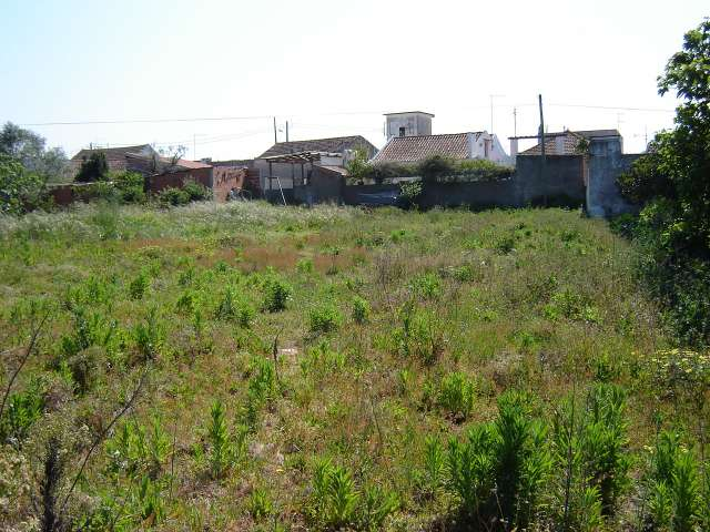 Imobiliário - Vendas -Terrenos - Coastal Plot For Construction - ID 6614