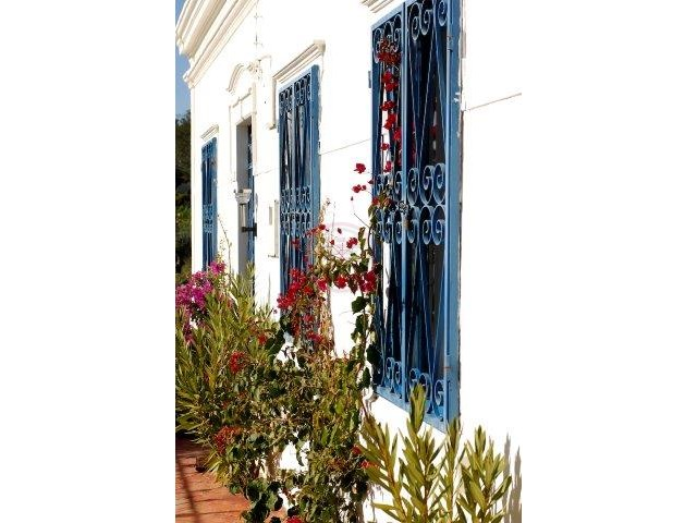Property_for_sale_in_Sao Bras De Alportel_LDO12712