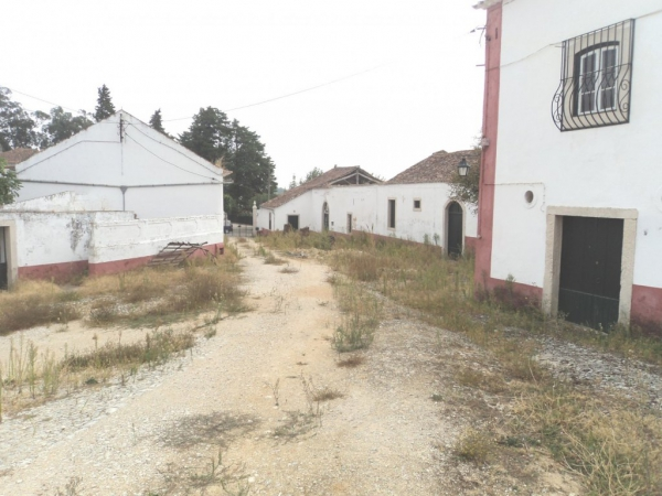 Country House_for_sale_in_Santarem_sma12976