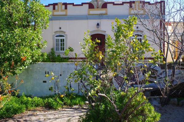 Country House_for_sale_in_Loule, Santa Barbara de Nexe, Sao Bras de Alportel_SMA13049