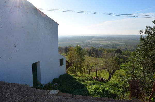 Country House_for_sale_in_S. Bartolomeu de Messines, Silves_SMA13050