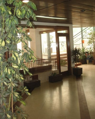 Imobiliário - Vendas - Escritorios & Lojas & Comercio - Restored Country House Inland Algarve_Distressed Sale - ID 4648