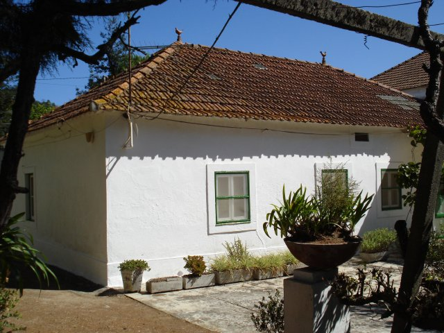 Imobiliário - Vendas - Casas - Rustic country house with character needing renovation - ID 5371