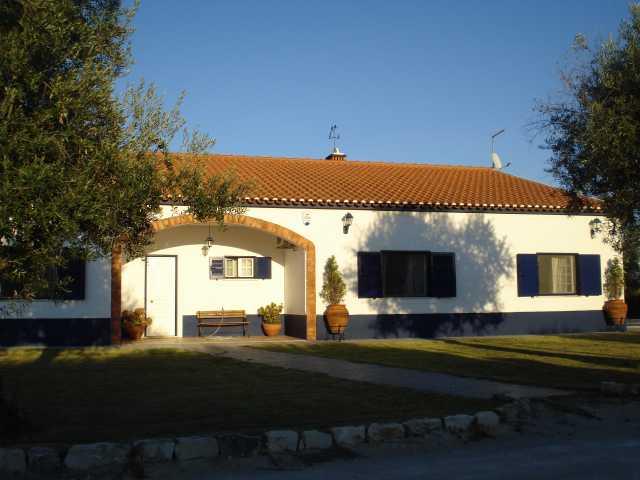 Imobiliário - Vendas - Casas - Traditional Horse Farm in Ribatejo - ID 5338