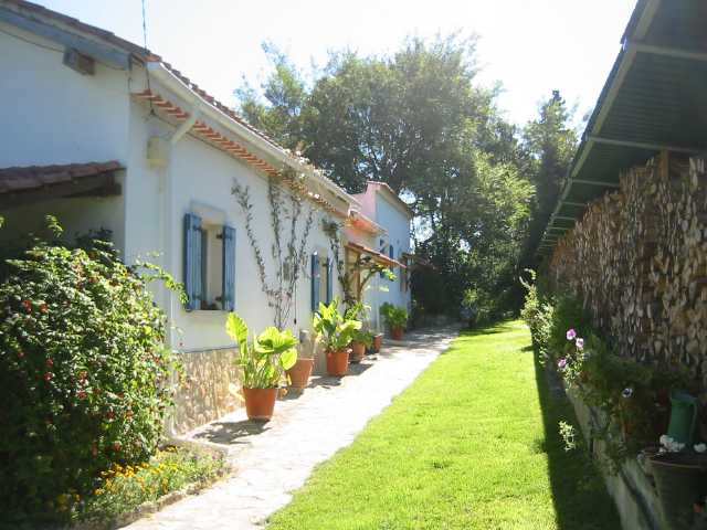 Imobiliário - Vendas - Casas - Beautiful country house - Excellent business opportunitty! - ID 5337