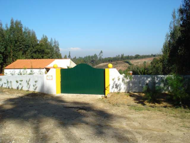 Imobiliário - Vendas - Casas - Small farm with rustic house on a very pleasant rural area! - ID 5279