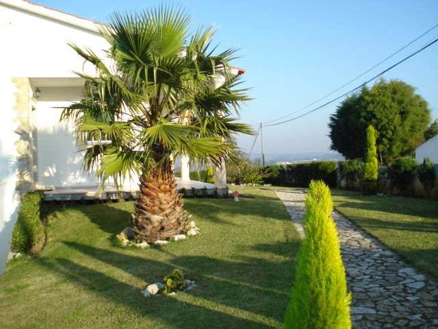 Imobiliário - Vendas - Casas - Detached house in excellent condition - ID 5264