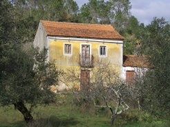 Imobiliário - Vendas - Casas - Lovely old Portuguese Manor House for restoration with big plot of land - ID 5213
