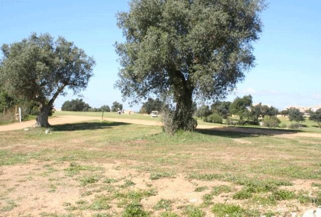 Land_for_sale_in_Carvoeiro_LFO418