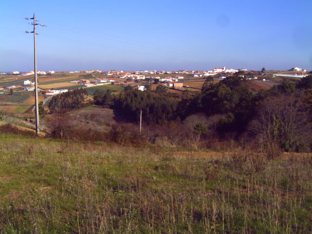 Land_for_sale_in_Alcobaca_PJA4370