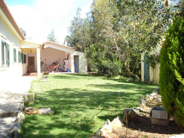 Casal Velho - Imobiliário - Vendas - Casas - PRICE REDUCTION!! Small Farm nearby Cadaval, with 12.500m2 of land. - ID 5145