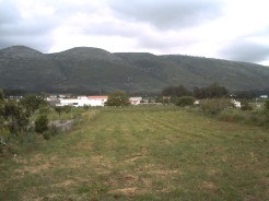 Imobiliário - Vendas - Casas - very large detached villa with beautifull country views, close to historical city of alcobaca - ID 5797