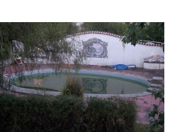 Imobiliário - Vendas - Casas - Wonderful Small Farm restored ideal for a Bed and Breakfast - ID 4991