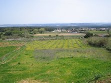 Imobiliário - Vendas -Terrenos - Large Plot with approved project *2 minutes from the coast - ID 6552
