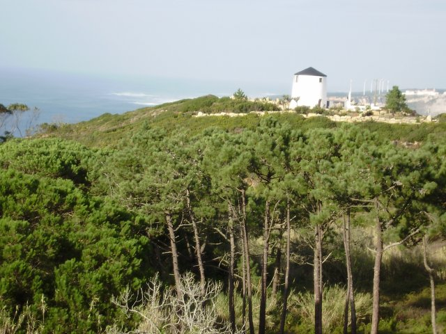 Land_for_sale_in_nazare_LBA5194