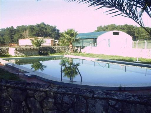 Equestrian Property_for_sale_in_Caldas da Rainha_HPO5252