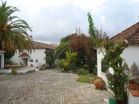 Country House_for_sale_in_Tomar_HPO5292