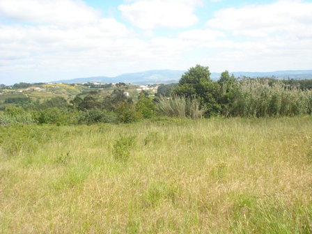 Land_for_sale_in_Caldas da Rainha_HPO5344