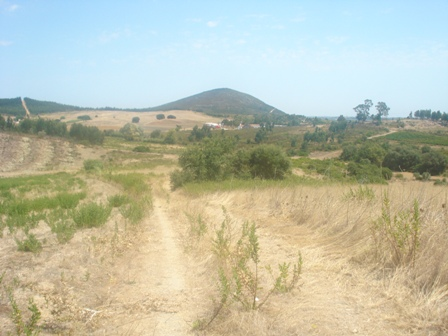 Imobiliário - Vendas -Terrenos - Plot for development ideal for a farm with horses - Real Estate Portugal - ID 6509