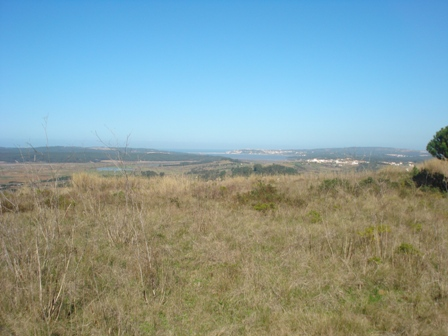 Imobiliário - Vendas -Terrenos - Plot for development with great views to the Lagoon of Obidos - Silver Coast Portugal - ID 6498