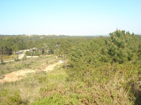 Land_for_sale_in_Caldas da Rainha_HPO5393