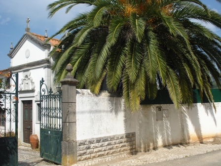 Bombarral - Real Estate - Sales - Houses - Silver Coast Portugal - Charming Farm with Palace and Chapel - ID 4611