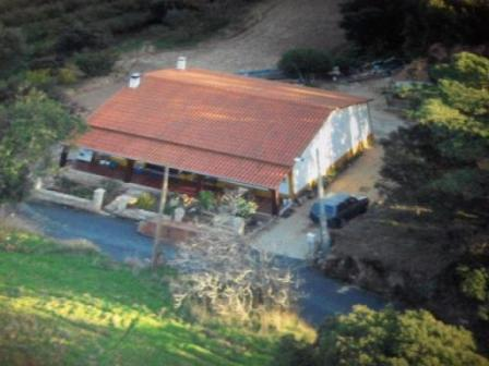 Imobiliário - Vendas -  Moradias - Real Estate Portugal - Farm with a nice traditional villa – countryside - ID 5512