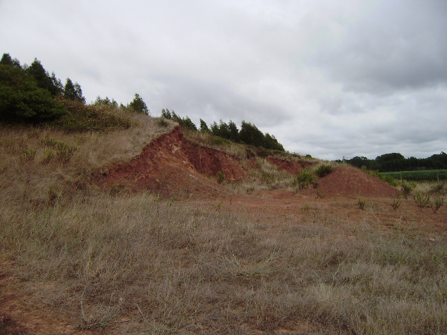 Land_for_sale_in_Foz do Arelho_LBA5812