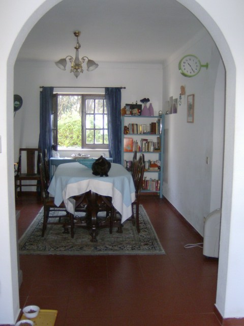 Cheap House_for_sale_in_Sao Martinho do Porto_PJA5855