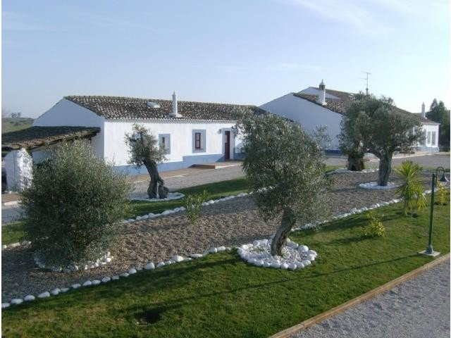 Equestrian Property_te_koop_in_Aljustrel_SMA6696