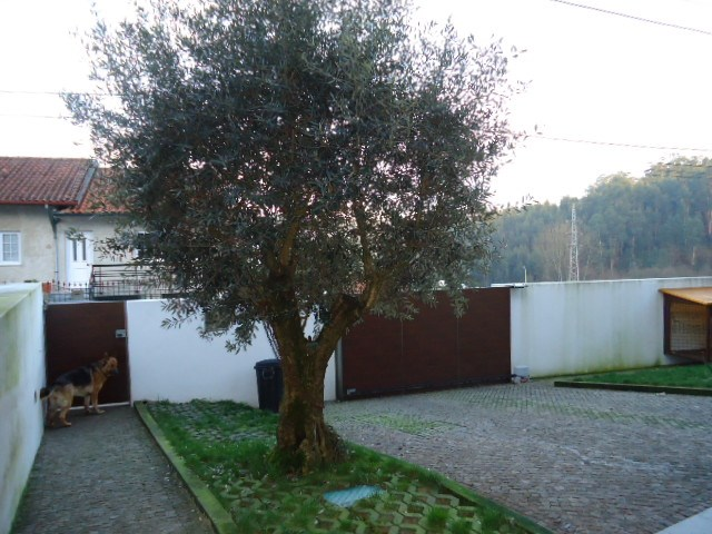 Real Estate_for_sale_in_Pedroso_SMA6926