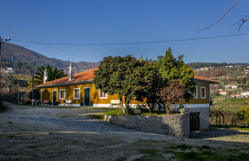 Country House_for_sale_in_Santa Cruz do Douro_SMA7183