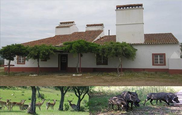 Country House_for_sale_in_Portel_SMA7406