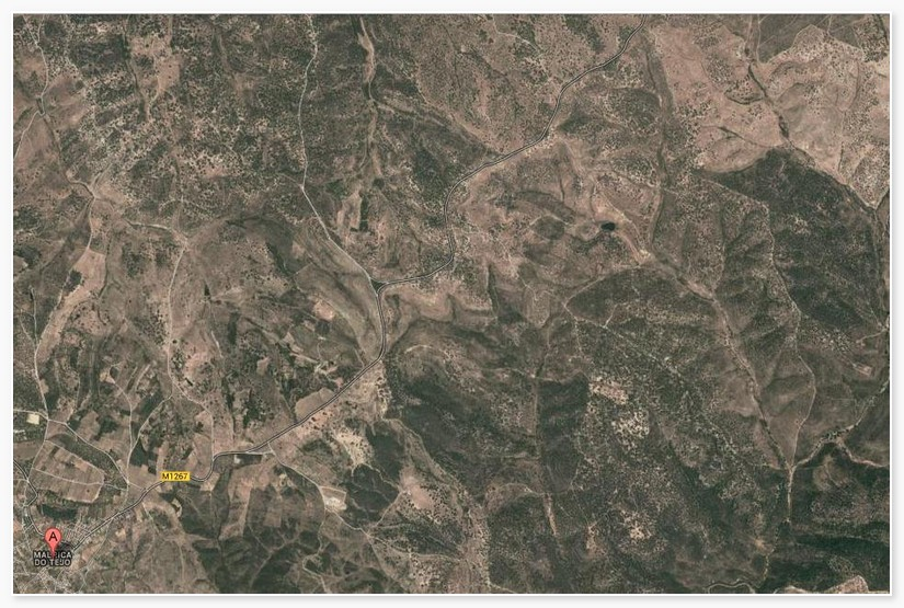 Forestry_for_sale_in_Castelo Branco_SMA7477
