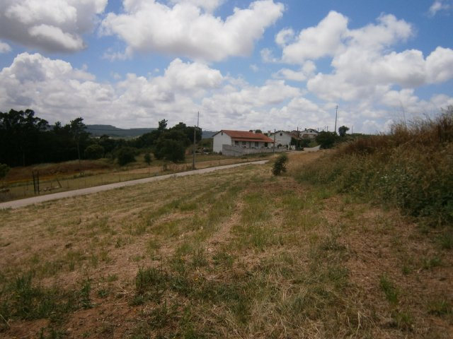 Land_for_sale_in_Alcobaca_LBA7607