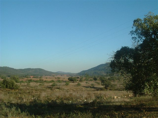 Land_for_sale_in_Loule_LDO8257