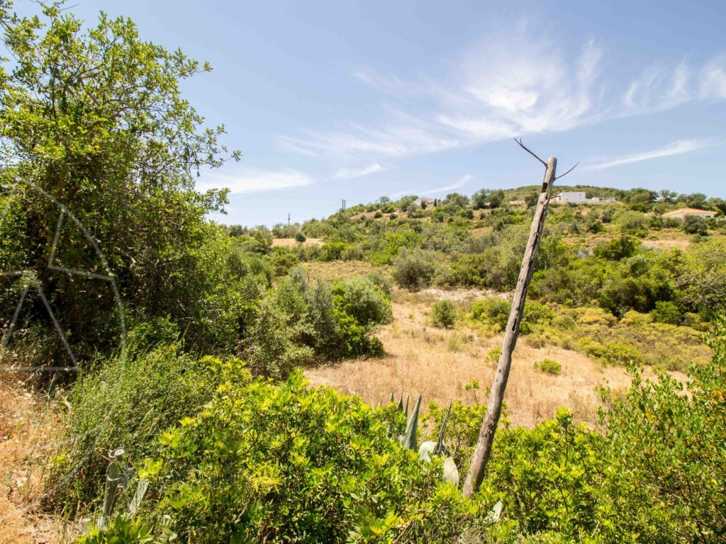 Rural Land_for_sale_in_Faro_SMA8909
