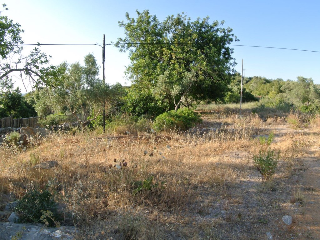 Rural Land_for_sale_in_Olhão_SMA8911